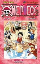 Gerekli Şeyler - One Piece Cilt 32 Adanın Şarkısı