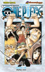 Gerekli Şeyler - One Piece Cilt 39