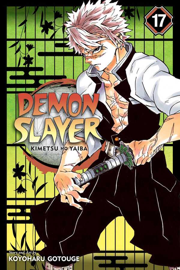VIZ - Demon Slayer Kimetsu No Yaiba Vol 17 TPB